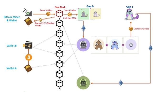 รูปที่ 6 : วิเคราะห์หลักการใช้ Blockchain ใน Bitcoin เปรียบเทียบกันใน CryptoKitties