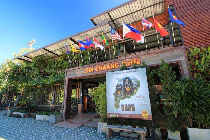 """""""ดอยช้าง"""" กาแฟไทยจากยอดดอย สู่ความอร่อยในแก้ว"""
