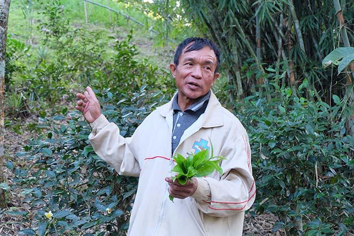 นายเหรียญ คำแคว่น เกษตรกรผู้เป็นต้นแนวคิด การสร้างป่าไว้ในบ้าน ในลุ่มน้ำน่าน