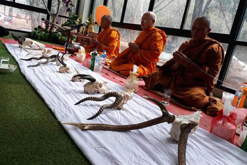สวนสัตว์โคราชปลุกจิตสำนึก ปชช.ร่วมอนุรักษ์คุ้มครองสัตว์ป่าให้อยู่คู่ไทยและโลกตลอดไป