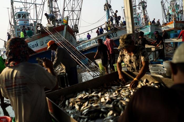 'เอ็นจีโอนอก'โวยอีกอุตฯประมงไทย  'ปัญหาค้ามนุษย์-กดขี่แรงงาน'ยังเยอะ