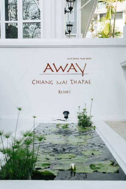 สัมผัสเสน่ห์แห่งความงามสไตล์โคโลเนียล ล้านนา  กับ Away Chiang Mai Thapae Resort – A Vegetarian Retreat