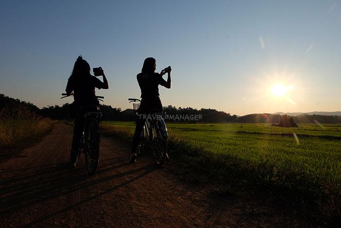 ชมพระอาทิตย์ตกดินที่ทุ่งนา