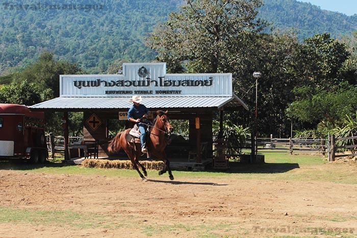 """""""ขุนฝางสวนม้าโฮมสเตย์"""" ที่เที่ยวใหม่ในอุตรดิตถ์...สุดมันขี่ม้า-ยิงธนู กลางขุนเขาสไตล์คาวบอย"""