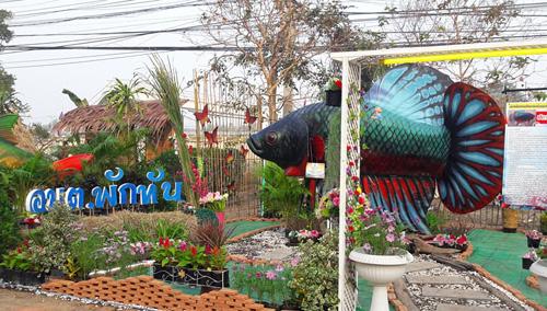 เริ่มแล้วงานเทศกาลกินปลาของดีเมืองสิงห์บุรี