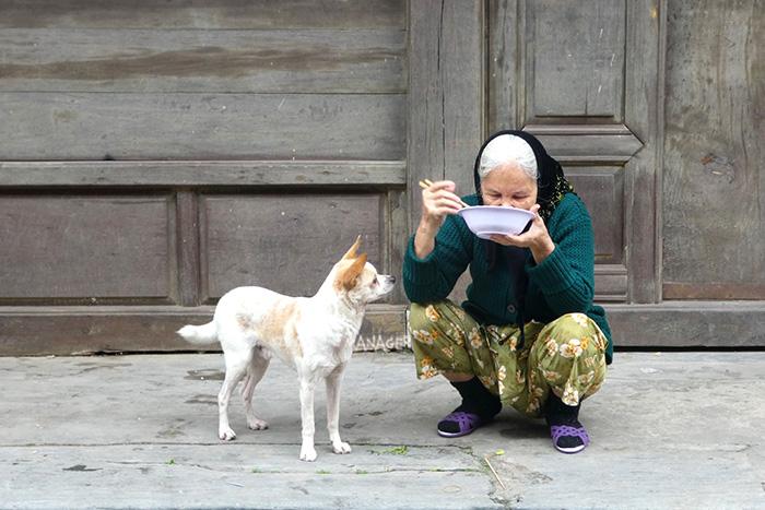 ภาพน่ารักของคุณยายกับหมาคู่ใจที่เมืองเก่า