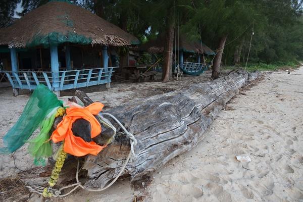 เฮ! ต้นยางยูงยักษ์อายุกว่า 100 ปี ให้โชคทำคนถูกนับแสน แห่นำเครื่องเซ่นไหว้มาแก้บน