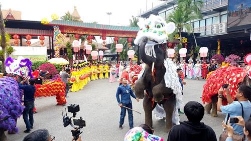วันเที่ยวตรุษจีนคึก นักท่องเที่ยวนับหมื่นแห่ชมช้างเชิดสิงโต สวนนงนุชพัทยา