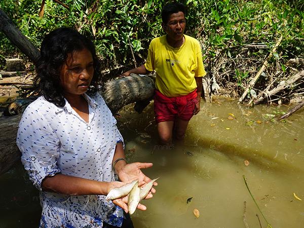 ชาวบ้านโวยโรงงานแปรรูปยางใน จ.พัทลุง ปล่อยน้ำเสียลงแม่น้ำทำปลาตายเพียบ