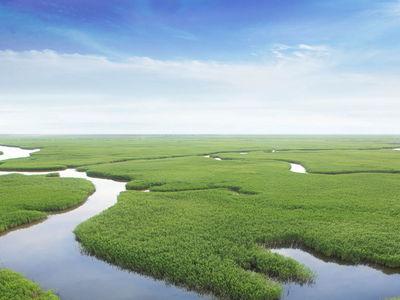 จีน ประกาศกำหนดเขตอนุรักษ์แห่งชาติใหม่ 6 แห่งรวดฯ