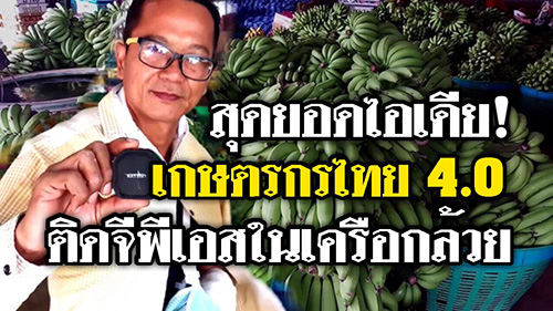 (ชมวิดีโอ) หัวขโมยไปไม่รอด! กล้วยหายซ้ำซากจนต้องติดจีพีเอส