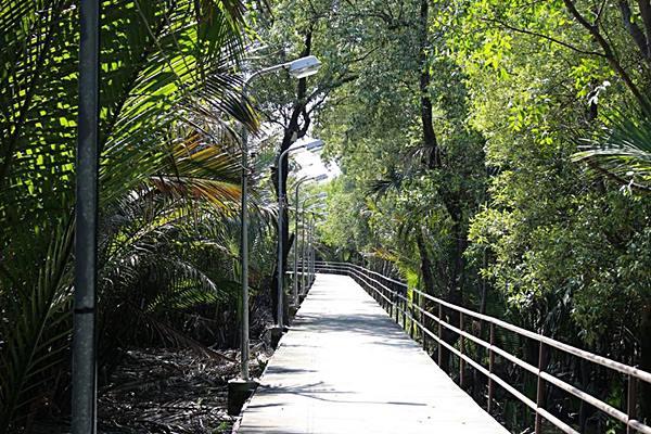 ทางเดินผ่านป่าชายเลนไปตัวป้อม