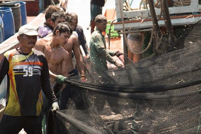 """In Clips : ยูเอ็นชี้แรงงาน """"อุตสาหกรรมประมงไทย"""" ดีขึ้น แต่ยังมีค่าจ้างไม่เป็นธรรม-สัญญาเอาเปรียบ ไม่พูดถึงแรงงานเรือประมงไกลฝั่งเจ้าปัญหา"""
