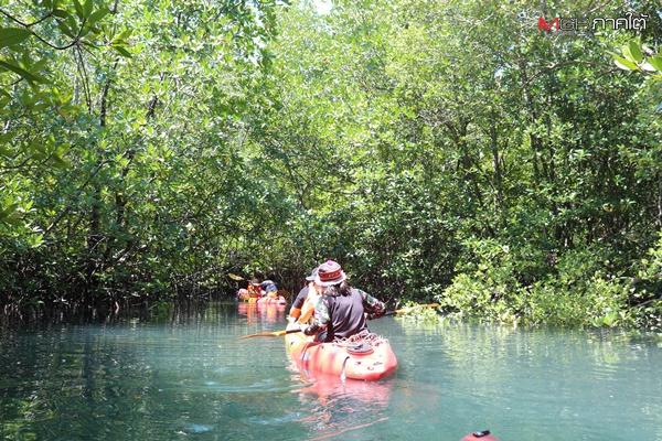 ล่องคายัคศึกษาธรรมชาติป่าโกงกางบ้านท่าฉัตรไชย-พักผ่อนมุมสงบบนเกาะละวะใหญ่