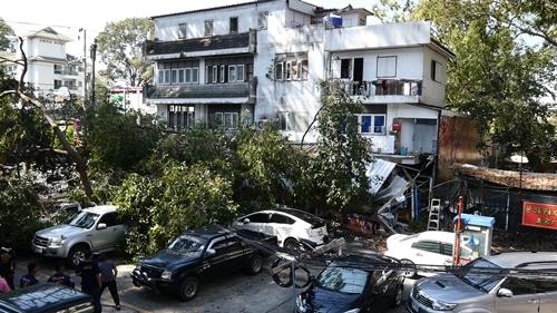 วินาศสันตะโร! ต้นพะยอมยักษ์โค่นทับบ้าน –รถยนต์ ปชช.ในเมืองพัทยา เสียหายยับ