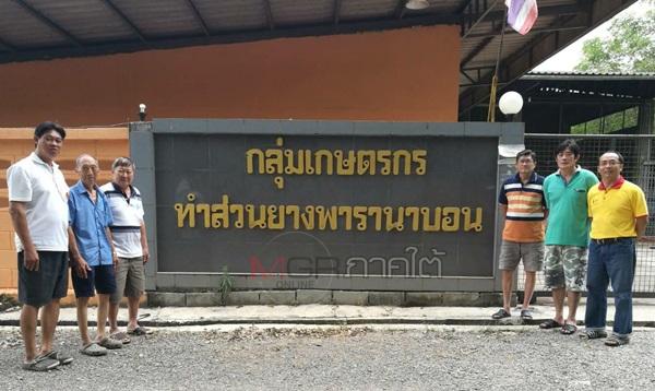 ผู้เขียนกับกงซี้สวนยางนาบอน