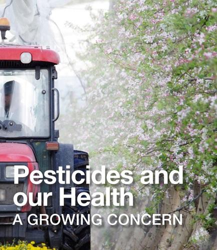 ยาฆ่าแมลง VS. ผลกระทบต่อสุขภาพ เมื่อความตระหนักอันตรายกำลังเข้มแข็ง