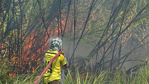 หม้อแปลงไฟระเบิดทำให้เพลิงลุกไหม้ไร่อ้อยกว่า 20ไร่ใช้กว่า 3ชั่วโมงจึงสงบ