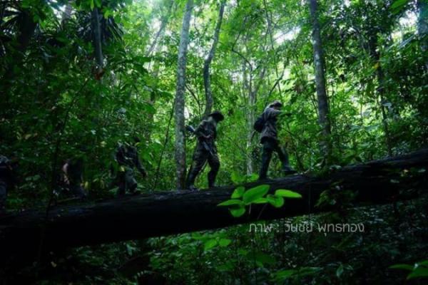 """ไม่เฉพาะตุลาการ! จับตา """"หมู่บ้านป่าแหว่ง"""" เฟส 2 กำลังจะผุดที่ป่าต้นน้ำผืนสุดท้ายของ จ.สงขลา"""