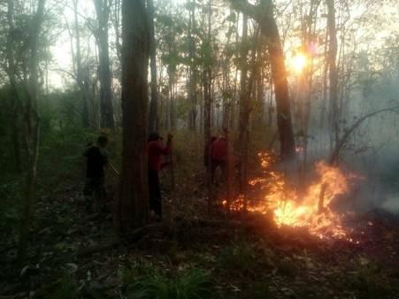 หมดช่วงห้ามเผาเอาทันที ไฟป่าตากปะทุหนัก ฮอตสปอตโผล่พรึบ 9 อำเภอ