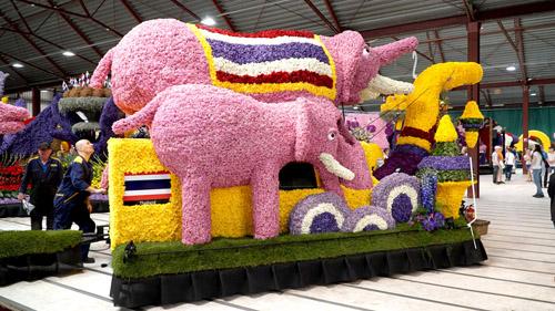 รถบุปผชาติสวนนงนุชพัทยา โดดเด่นในงานพาเหรดดอกไม้ที่เนเธอร์แลนด์