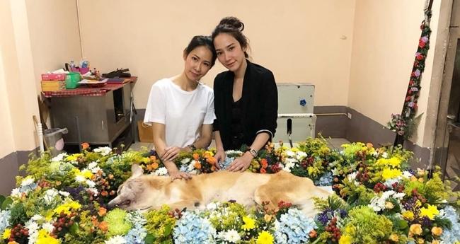 """""""อั้ม พัชราภา"""" สงสารเพื่อนสูญเสียน้องหมา ร่วมทำพิธีศพ"""