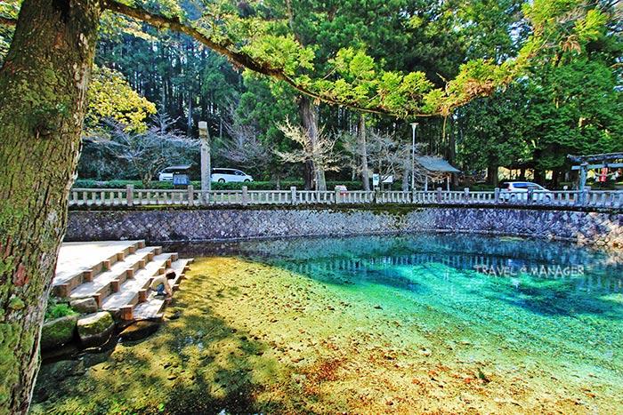 เบปปุเบ็นเท็นอิเคะ นอกจากจะมีความสวยใสแล้ว คนญี่ปุ่นยังเชื่อว่าเป็นบ่อน้ำศักดิ์สิทธิ์อีกด้วย