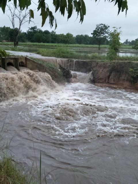 ฝนถล่มชัยนาทนานกว่า 2 ชั่วโมง ทำพื้นที่เกษตรเสียหายกว่า 1000 ไร่