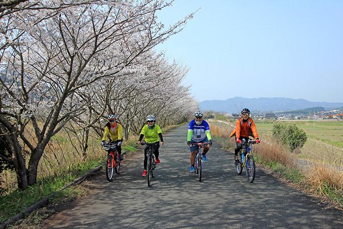 เส้นทางปั่นผ่านซุ้มซากุระ เลาะเลียบแม่น้ำฟุชิโนกาวะ