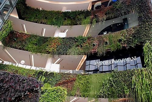 สวนแนวตั้ง ทั้งของรัฐและเอกชน เป็นอีกวิธีหนึ่งที่ช่วยเพิ่มพื้นที่สีเขียวในกรุงเทพฯ