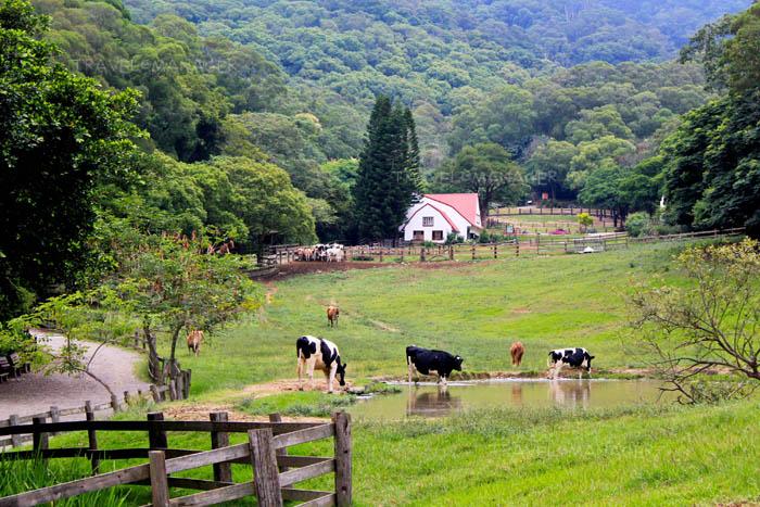 ชวนเที่ยวฟาร์มในไต้หวัน