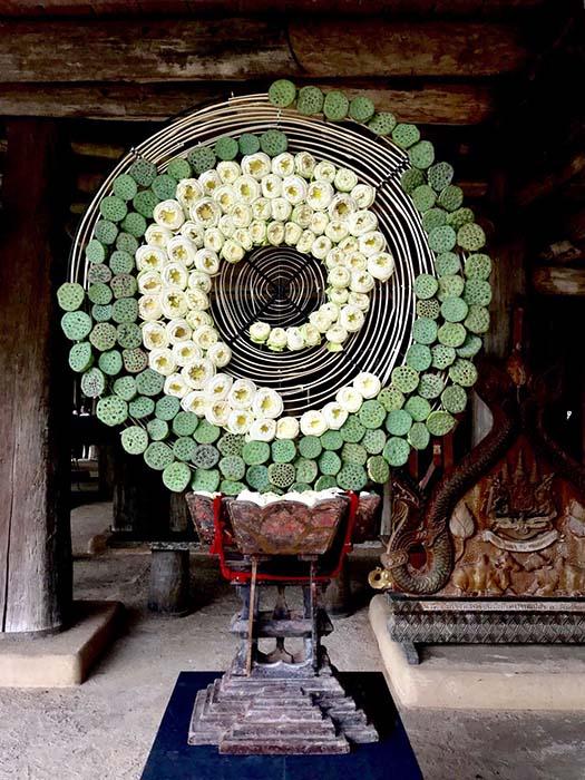 ดอกบัวกับศิลปะการจัดดอกไม้ให้ความรู้สึกสวยงามแปลกตา