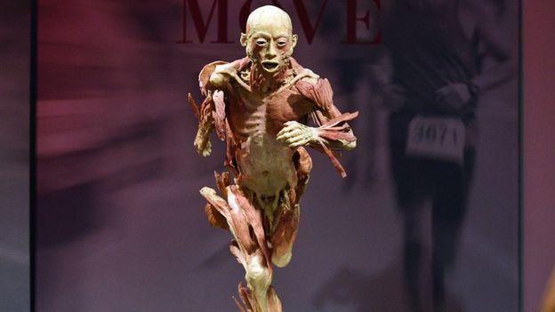 Real Bodies การจัดแสดง กายวิภาคมนุษย์ 20 ร่าง ของนิทรรศการหมุนเวียน ที่พิพิธภัณฑ์สหราชอาณาจักร (ภาพเอเจนซี)