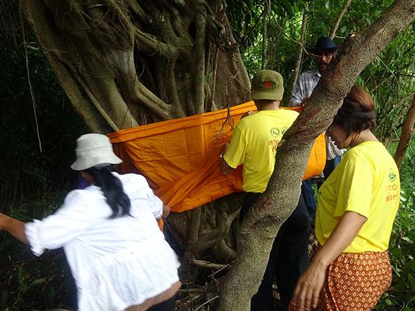 ชาวบ้านวังนาในร่วมพิธีบวชต้นไม้ในเขตอนุรักษ์ป่าเขาบรรทัด สร้างความตระหนักจากรุ่นสู่รุ่น