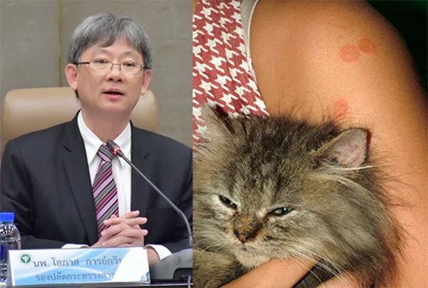 """เหล่าทาสแมวพึงระวัง """"โรคกลากแมว"""" จากเชื้อรา แนะ 9 วิธีเลี้ยงให้สะอาด ไม่เสี่ยงติดเชื้อ"""