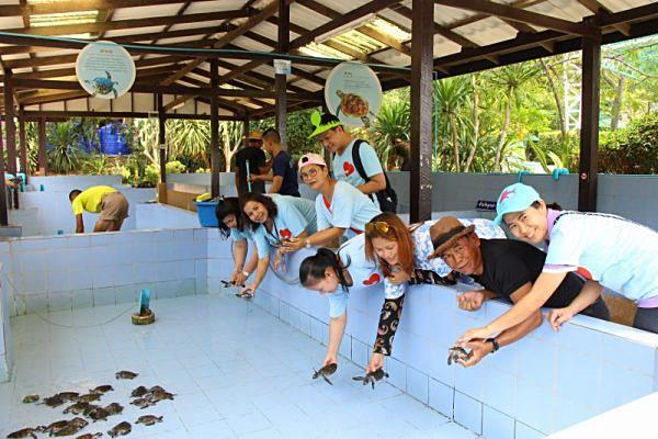 ศูนย์อนุรักษ์เต่าทะเล กองทัพเรือ