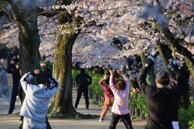 """""""อายุเฉลี่ย"""" กับ """"อายุสุขภาพ"""" และเคล็ดลับการมีชีวิตยืนยาวของคนญี่ปุ่น"""