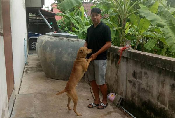 หนุ่มเจ้าของหมาพร้อมรับผิดชอบหนูน้อยโดนรุมขย้ำดับ จนท.แจ้งข้อหาปล่อยปละสัตว์ดุร้ายจนเกิดอันตราย