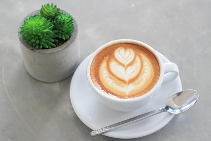 """จิบชา-กาแฟหอมกรุ่น ส่งตรงจากภาคเหนือ ในงาน """"North Festival ตอน ชา...จากยอดดอยสู่เมือง"""""""