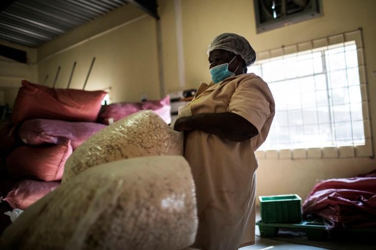 หญิงคนงานแบกถุงบรรจุเม็ดเบาบับ (MARCO LONGARI / AFP)