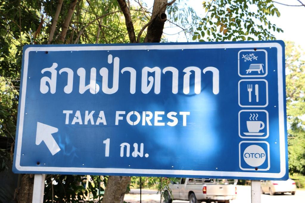 เกษียณสร้างสุข..อดีตผู้ว่าฯเปิดร้านสวนป่าตาการิมปิง ชูเมนูเด็ด-ชมพันธุ์ไม้หายาก