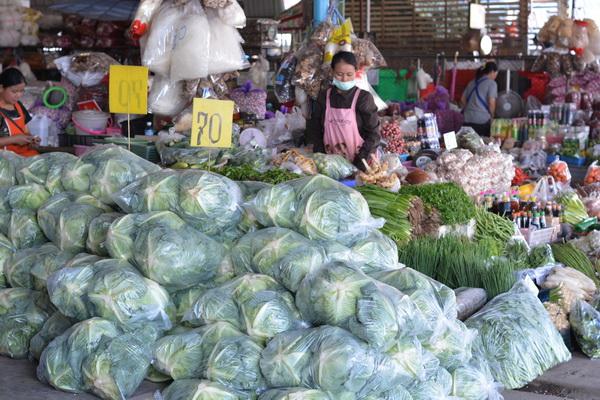 เมืองทองเจริญศรีตลาดค้าผักผลไม้เข้มตรวจยาฆ่าแมลงรับเทศกาลกินเจ