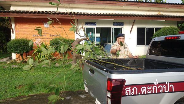 พังงาปิดล้อมตรวจค้นในพื้นที่ อ.ตะกั่วป่า 15 จุด จับ 6 ผู้ต้องหายาเสพติด/อาวุธปืน