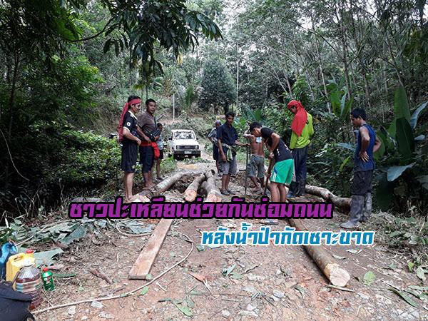 ชาวปะเหลียนร่วมแรงร่วมใจ ช่วยกันซ่อมถนนในหมู่บ้านถูกน้ำป่ากัดเซาะจนขาด