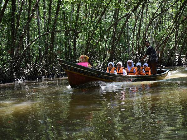 """ล่องเรือกอและลอดอุโมงค์โกงกาง ชมฝูงกาน้ำ ลิ้มรสอาหารพื้นเมืองที่ """"ชุมชนท่องเที่ยวบางปู"""""""