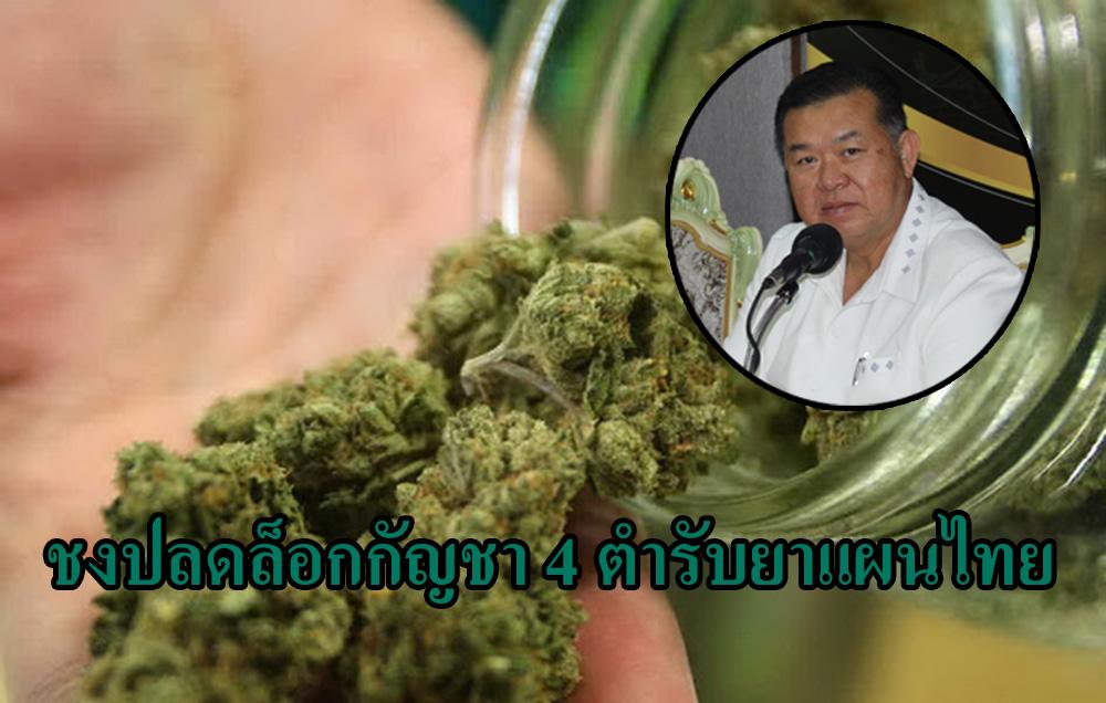 """เสนอปลดล็อก """"กัญชา"""" 4 ตำรับยาแผนไทย ยันมีการสกัดก่อนใช้ เชื่อไม่ติดปัญหายาเสพติดประเภท 2"""