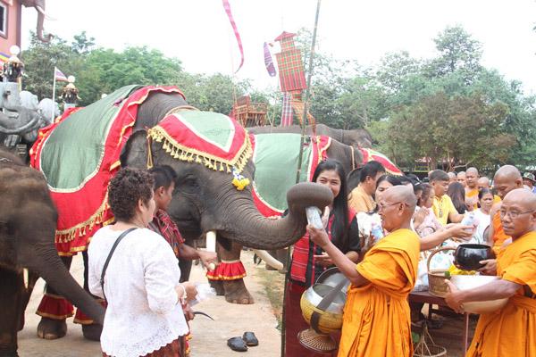 น่ารักอิ่มบุญ! ช้างแสนรู้สุรินทร์ทำบุญตักบาตรเทโวร่วมพุทธศาสนิกชนนักท่องเที่ยวจำนวนมาก