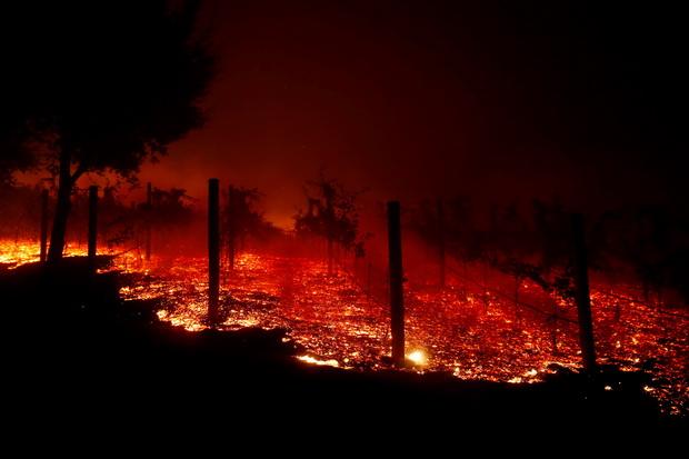 เหยื่อไฟป่าเพิ่มเป็น31คน-หายกว่า200 ผู้ว่าฯแคลิฟอร์เนียกระทุ้งทรัมป์ให้งบฉุกเฉิน