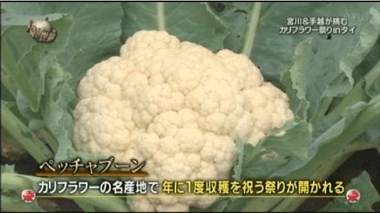"""NIHON TV กล่าวขอโทษ กรณีกุเรื่องเทศกาลกะหล่ำดอกที่ไทยในรายการ """"Itte Q!"""""""