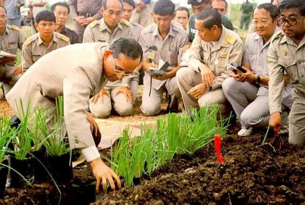 """ถามคนไทย! """"ความมั่งคั่งบนผิวดิน"""" เรามีเพียงพอที่จะสร้างชาตินี้ให้เจริญได้ไหม?"""